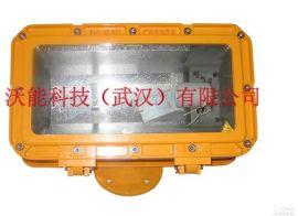防爆强光泛光灯(VDF01型)
