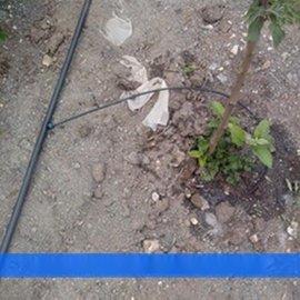 苹果小管出流灌溉设备安装报价