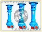 临龙3寸立式排污泵80NPL50-20
