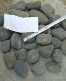 上海灰色天然鵝卵石多少錢一噸