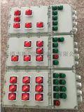 BXD53-12/K100A防爆照明动力配电箱