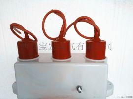 三相组合式过电压保护器BF-5Z-10/600