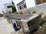 蔬菜清洗机 气泡清洗机 菌类清洗机