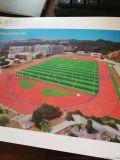 人造运动跑道 学校操场体育跑道 硅PU跑道场地