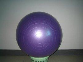 防爆健身球 (YH-GYM)