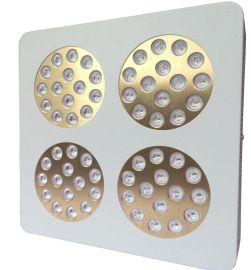 深圳LED植物灯600W红蓝多肉植物灯补光灯