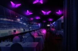 LED灯饰蝴蝶 家庭装饰灯家用照明 吊灯 吸顶灯 落地灯