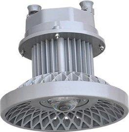 德力西DGS系列圆形矿用隔爆型LED巷道灯