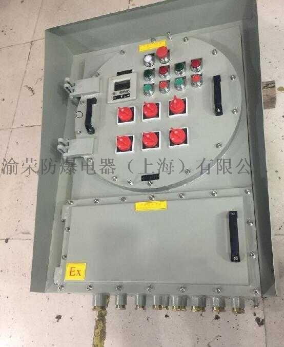 上海渝榮各種規格材質非標防爆配電箱按圖定製