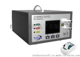 手提式氢气分析仪、手提式氢气检测仪TD800-H2