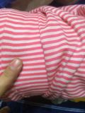 庫存針織純棉單麪條紋珠地條紋匹裝