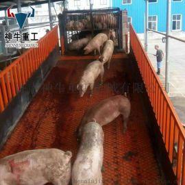定做上猪台屠宰场养殖场装卸猪台固定式液压升降台