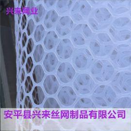 现货塑料平网,雏鸡塑料踩踏网,聚乙烯塑料网厂家