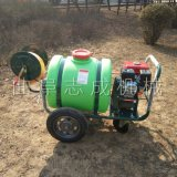 供应160L汽油高压喷雾器园林绿化洒水机