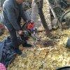 林业挖根起树机 便携式汽油移苗机