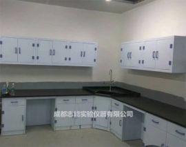四川PP实验台生产厂家 成都实验室设计 PP边台