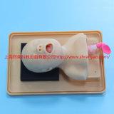 RY/J2A新生儿气管插管训练模型