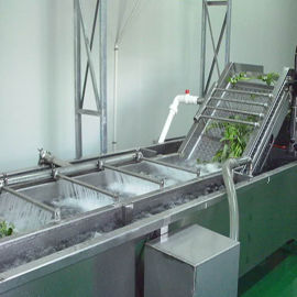 草莓清洗机 果蔬气泡清洗机 全自动气泡清洗机