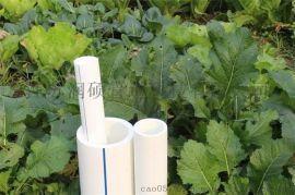 厂家现货全新原料冷热水ppr管材管件直供常州地区