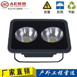 AE照明led泛光灯100W投光灯大功率led广告灯 2芯片100W正白光