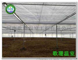温室建设的气候与环境条件-河南歌珊温室