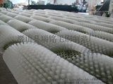 毛刷厂家供应尼龙丝毛刷辊 剑麻丝毛刷辊 工业清洗机毛刷辊 加工定制各种毛刷辊