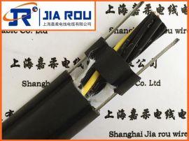 电动葫芦电缆-电动葫芦  手柄连接线RVV1G/2G