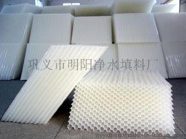 北京蜂窝斜管填料