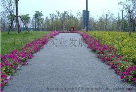 景观生态透水混凝土路面材料厂家 施工价格