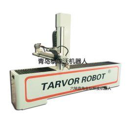 六轴直角坐标焊接机器人T-006