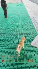 羊床塑料漏粪板 防滑塑料漏粪地板 拼装塑料漏粪地板
