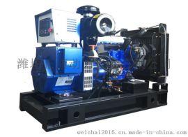 扬动25kw天然气发电机组 小型家用环保燃气发电机