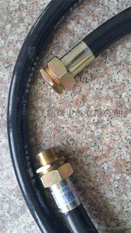 浙江BNG20*700 G3/4防爆连接软管