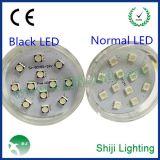 Dc12v 35mm LED装饰灯