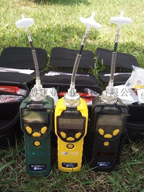 高精度VOC气体检测仪ppbRAE 3000