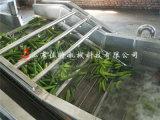 黄秋葵气泡清洗机 果蔬清洗生产线