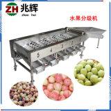 工厂定制不锈钢圆球类蔬果分选设备 苹果柠檬筛选机