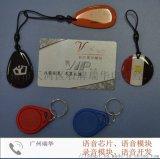 精品鑰匙扣,標準智慧卡IC