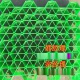 騰疆生產植草格,綠化植草格公路植草格耐用抗壓