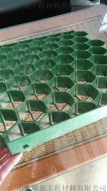 泰安哪个厂家生产停车场平口植草格