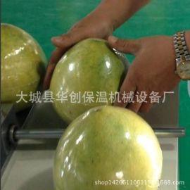 封闭式保鲜膜包装蔬菜水果包装机 全自动封切套膜机