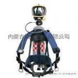 巴固C900正压式空气呼吸器 SCBA105M