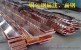 铜包钢扁钢/电镀铜接地扁钢价格/沧州蓝泽防雷生产铜包钢扁钢