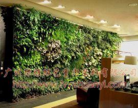 绿雅环艺+仿真植物墙,
