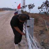 钢丝绳护栏厂家、景区绳索护栏、绳索防撞护栏