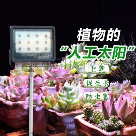 植物激光生长灯,室内,果蔬,大棚蔬菜补光灯