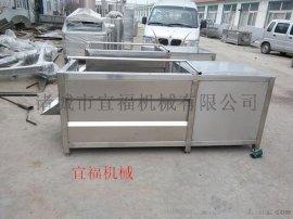 宜福YF-1000根状蔬菜毛辊清洗机