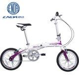 ENDA恩达全铝合金车架自行车 折叠自行车单速天翼A16.A