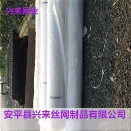 定做塑料平网,合肥塑料平网,广州塑料网厂家