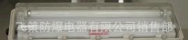 江苏飞策防爆 BYS-系列防爆防腐全塑(洁净)荧光灯